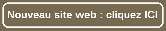 anne-francq-boutique-nouveau-site-web